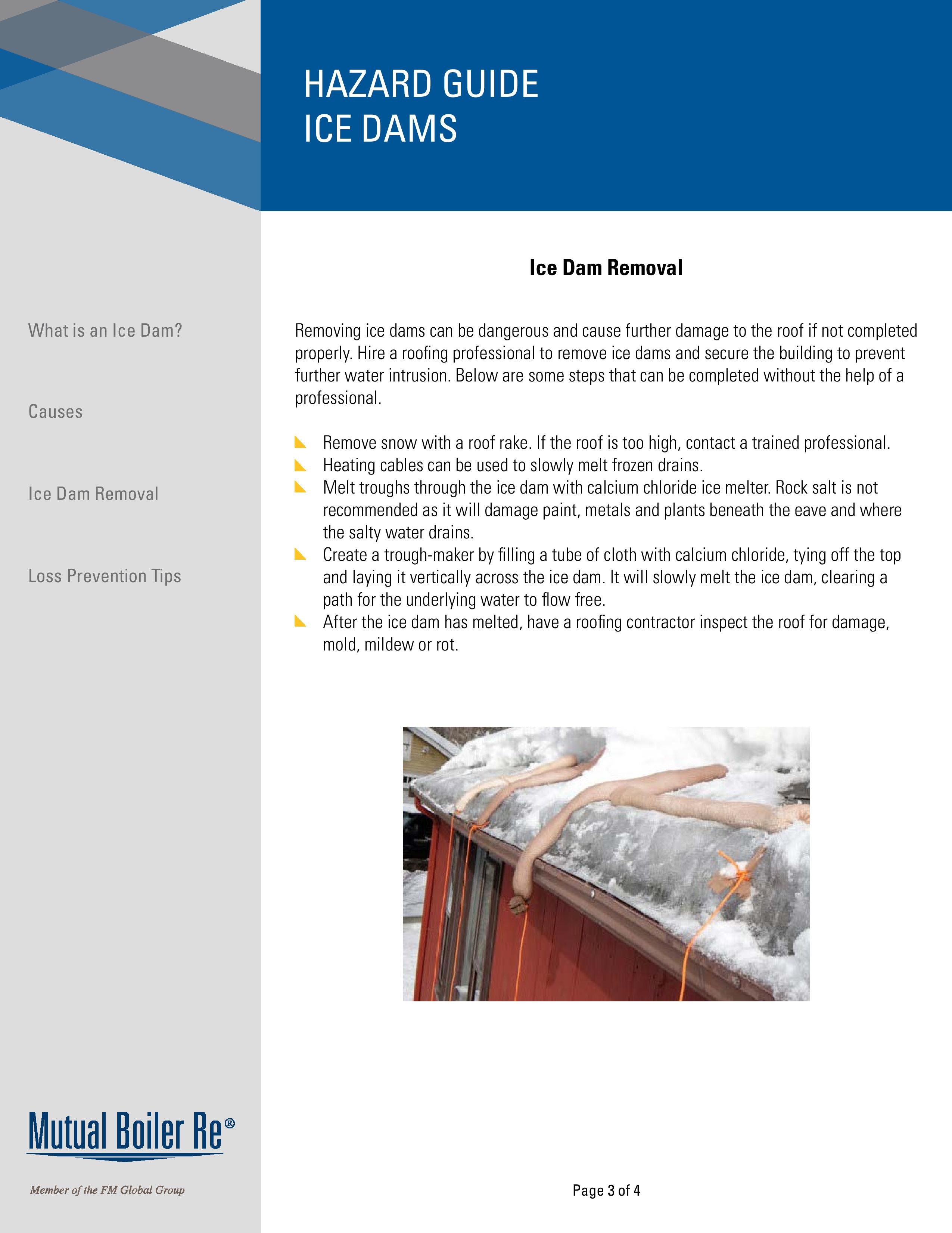 hazard_guide_-_ice_dams-page-003